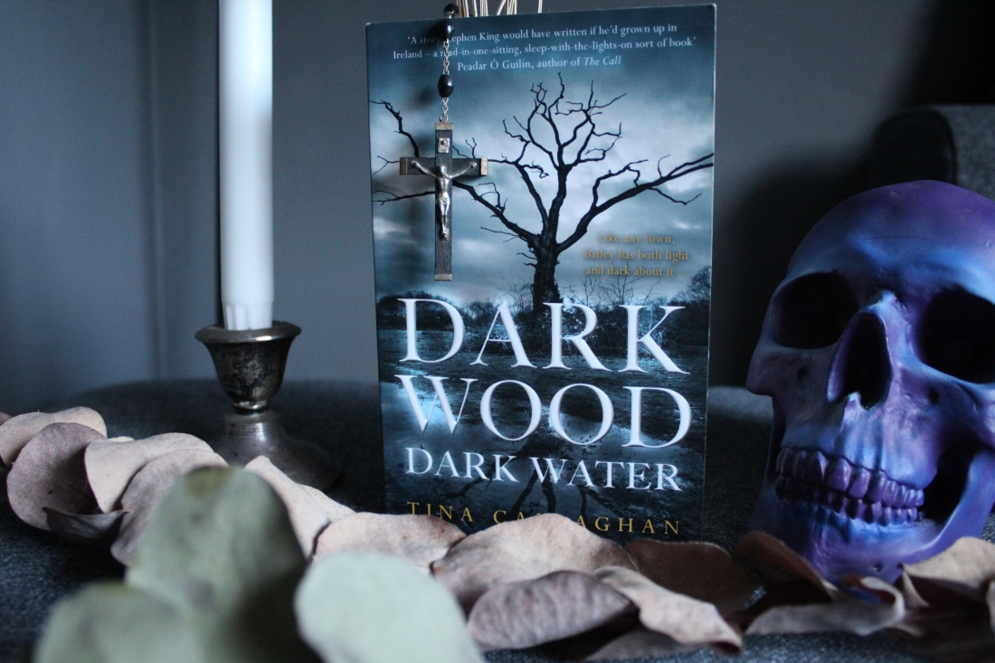 dark wood dark water tina callaghan YA horror poolbeg press