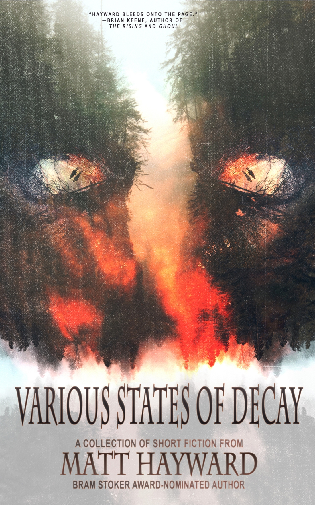 Various States eBook cover
